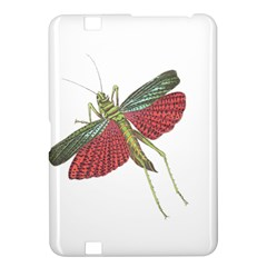 Grasshopper Insect Animal Isolated Kindle Fire Hd 8 9