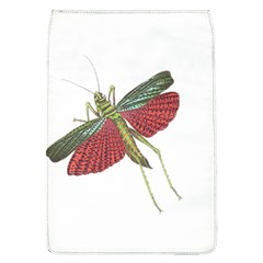 Grasshopper Insect Animal Isolated Flap Covers (l)