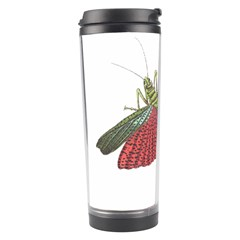 Grasshopper Insect Animal Isolated Travel Tumbler