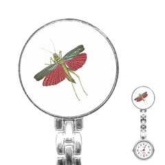 Grasshopper Insect Animal Isolated Stainless Steel Nurses Watch
