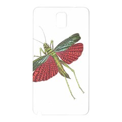 Grasshopper Insect Animal Isolated Samsung Galaxy Note 3 N9005 Hardshell Back Case