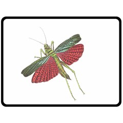 Grasshopper Insect Animal Isolated Double Sided Fleece Blanket (large)  by Nexatart