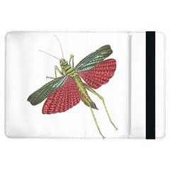 Grasshopper Insect Animal Isolated Ipad Air Flip