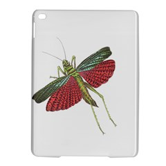 Grasshopper Insect Animal Isolated Ipad Air 2 Hardshell Cases