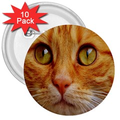 Cat Red Cute Mackerel Tiger Sweet 3  Buttons (10 pack)  by Nexatart