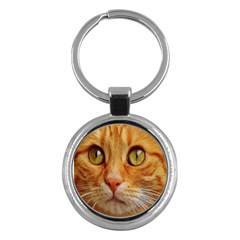 Cat Red Cute Mackerel Tiger Sweet Key Chains (round)  by Nexatart