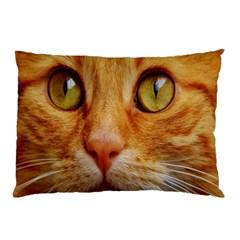 Cat Red Cute Mackerel Tiger Sweet Pillow Case by Nexatart