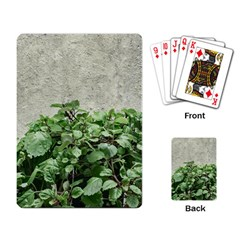 Plants Against Concrete Wall Background Playing Card by dflcprints