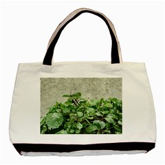 Plants Against Concrete Wall Background Basic Tote Bag (two Sides) by dflcprints