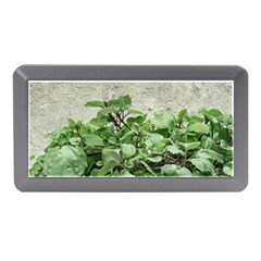 Plants Against Concrete Wall Background Memory Card Reader (mini) by dflcprints