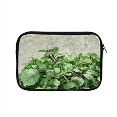 Plants Against Concrete Wall Background Apple Macbook Pro 15  Zipper Case by dflcprints