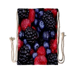 Forest Fruit Drawstring Bag (small) by Nexatart