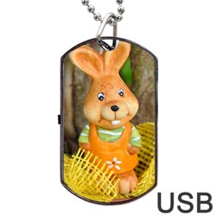 Easter Hare Easter Bunny Dog Tag Usb Flash (two Sides)