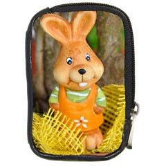 Easter Hare Easter Bunny Compact Camera Cases