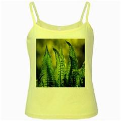 Fern Ferns Green Nature Foliage Yellow Spaghetti Tank