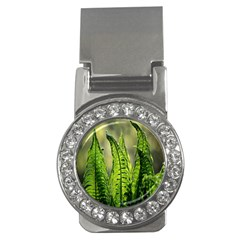 Fern Ferns Green Nature Foliage Money Clips (cz)