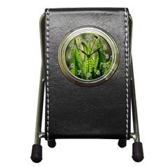Fern Ferns Green Nature Foliage Pen Holder Desk Clocks by Nexatart