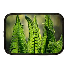 Fern Ferns Green Nature Foliage Netbook Case (medium)  by Nexatart
