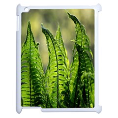 Fern Ferns Green Nature Foliage Apple Ipad 2 Case (white) by Nexatart