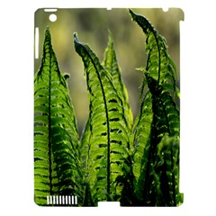 Fern Ferns Green Nature Foliage Apple Ipad 3/4 Hardshell Case (compatible With Smart Cover) by Nexatart