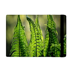 Fern Ferns Green Nature Foliage Apple Ipad Mini Flip Case by Nexatart