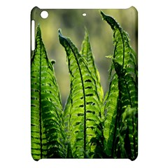 Fern Ferns Green Nature Foliage Apple Ipad Mini Hardshell Case by Nexatart