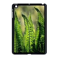 Fern Ferns Green Nature Foliage Apple Ipad Mini Case (black) by Nexatart