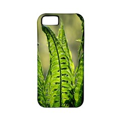 Fern Ferns Green Nature Foliage Apple Iphone 5 Classic Hardshell Case (pc+silicone)