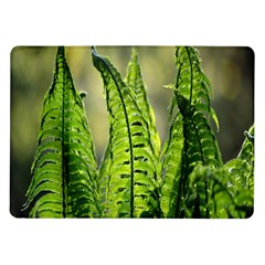 Fern Ferns Green Nature Foliage Samsung Galaxy Tab 10 1  P7500 Flip Case by Nexatart