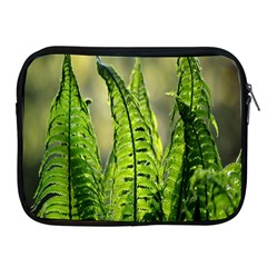 Fern Ferns Green Nature Foliage Apple Ipad 2/3/4 Zipper Cases by Nexatart
