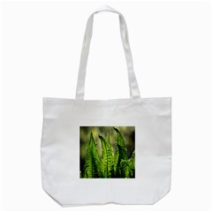 Fern Ferns Green Nature Foliage Tote Bag (white) by Nexatart