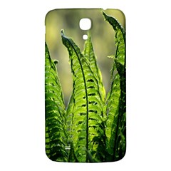 Fern Ferns Green Nature Foliage Samsung Galaxy Mega I9200 Hardshell Back Case by Nexatart