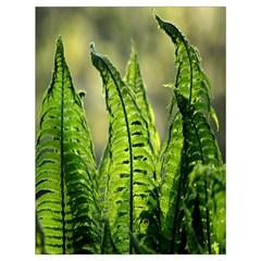Fern Ferns Green Nature Foliage Drawstring Bag (large) by Nexatart