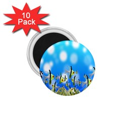 Pisces Underwater World Fairy Tale 1 75  Magnets (10 Pack)  by Nexatart