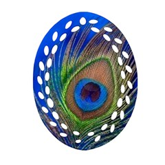 Blue Peacock Feather Oval Filigree Ornament (two Sides) by Amaryn4rt
