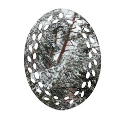 Winter Fall Trees Ornament (oval Filigree) by ansteybeta