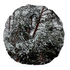 Winter Fall Trees Large 18  Premium Round Cushions by ansteybeta
