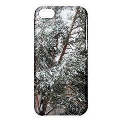 Winter Fall Trees Apple Iphone 5c Hardshell Case by ansteybeta