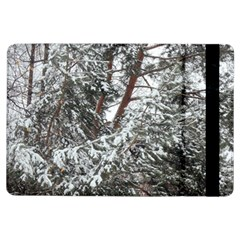 Winter Fall Trees Ipad Air Flip by ansteybeta