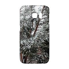 Winter Fall Trees Galaxy S6 Edge by ansteybeta