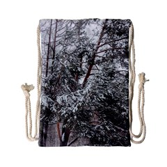 Winter Fall Trees Drawstring Bag (small) by ansteybeta