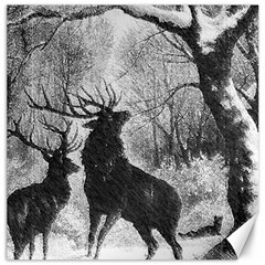 Stag Deer Forest Winter Christmas Canvas 16  X 16   by Amaryn4rt