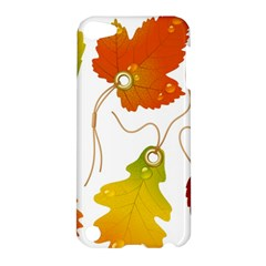 Vector Beautiful Maple Leaf Apple Ipod Touch 5 Hardshell Case by Nexatart