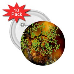 Backdrop Background Tree Abstract 2.25  Buttons (10 pack)