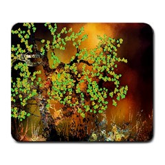 Backdrop Background Tree Abstract Large Mousepads