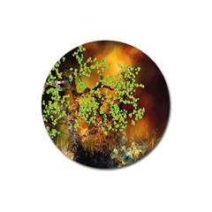 Backdrop Background Tree Abstract Magnet 3  (Round)