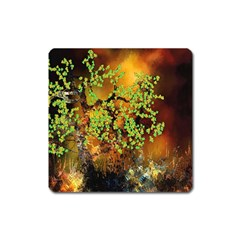 Backdrop Background Tree Abstract Square Magnet