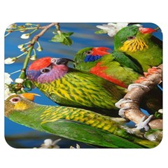 Beautifull Parrots Bird Double Sided Flano Blanket (medium)