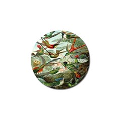 Beautiful Bird Golf Ball Marker