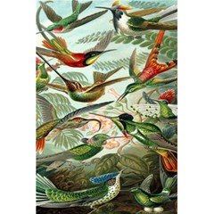 Beautiful Bird 5 5  X 8 5  Notebooks by Nexatart